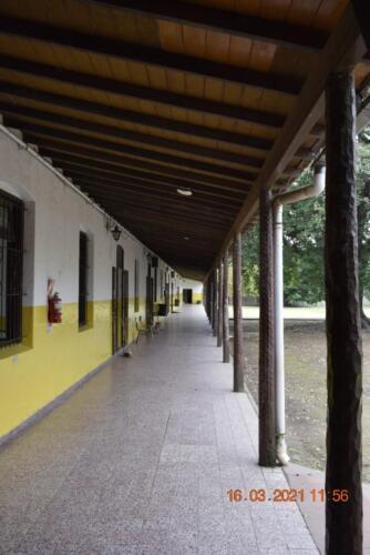 CEF-Paso-delRey-Inmaculada (13)