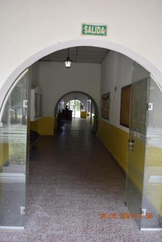 CEF-Paso-delRey-Inmaculada (16)