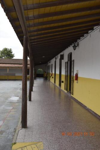 CEF-Paso-delRey-Inmaculada (17)