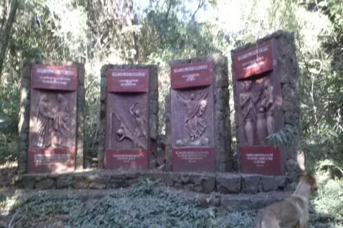 Santuario-Ecologogico-Paraguay (13)