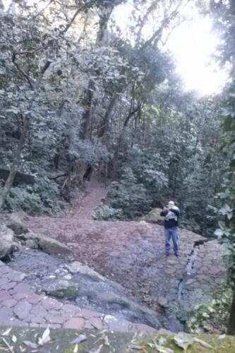 Santuario-Ecologogico-Paraguay (14)
