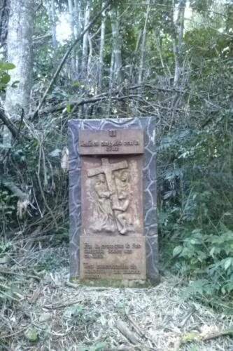 Santuario-Ecologogico-Paraguay (3)